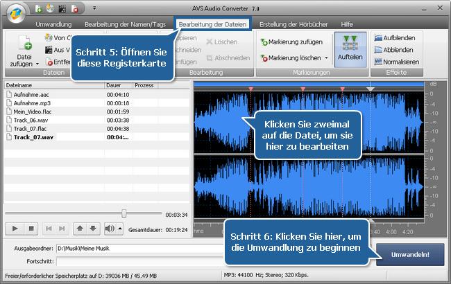 Arbeit mit dem AVS Audio Converter - Schritte 5, 6