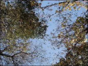 Nach der Anwendung des Effekts Glas