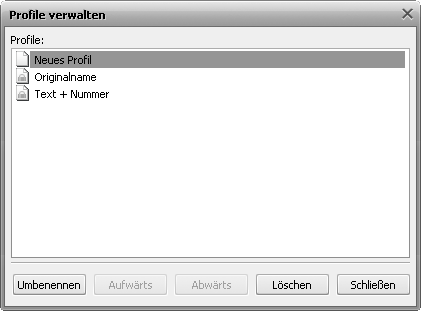 "Fenster ""Profile verwalten"""