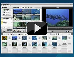 AVS Video Editor. Sehen Sie die Videopräsentation