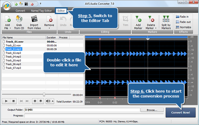 Working with AVS Audio Converter - Steps 5, 6