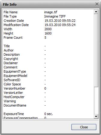 File Info window