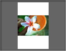 Resized Image with Stripes