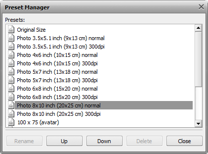 Presets Manager window