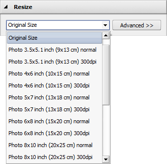 Resize Images panel