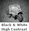Black and White High Contrast