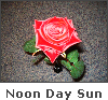 Noon Day Sun Effect