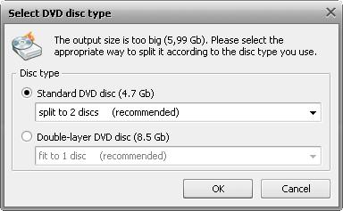 Select DVD Disc Type window