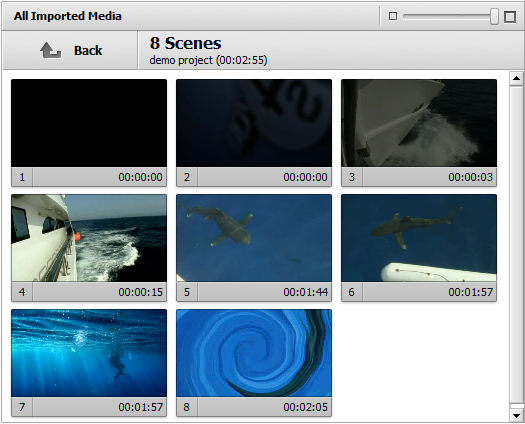 Detected scenes