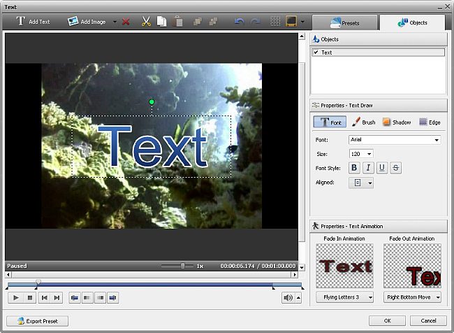 Edit text window