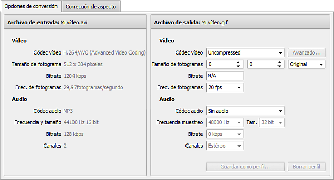 Pestaña Opciones de conversión - GIF