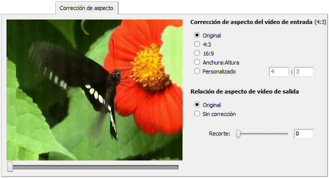 Aspect Correction tab