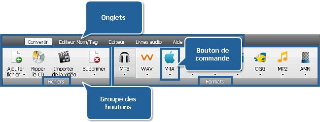 AVS Audio Converter - Onglet Convertir