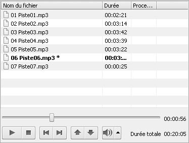 AVS Audio Converter - Zone d'audio d'entrée