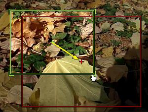 Panoramique et zoom dans la zone de prévisualisation