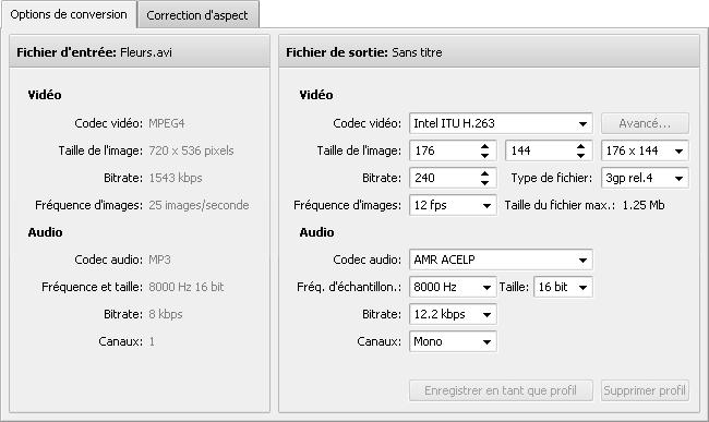 Onglet Options de conversion - 3GP