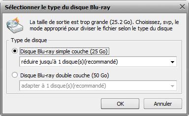 fenêtre Sélectionner le type du disque Blu-ray