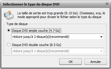 fenêtre Sélectionner le type du disque DVD