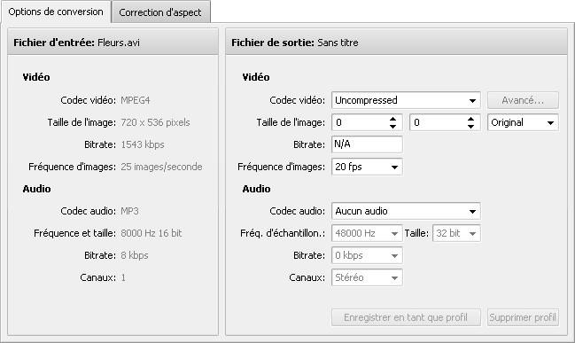 Onglet Options de conversion - GIF