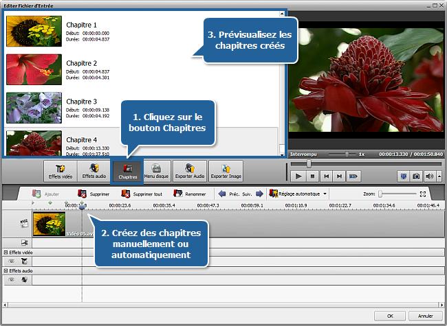 fenêtre Editer Fichier d'Entrée - Chapitres