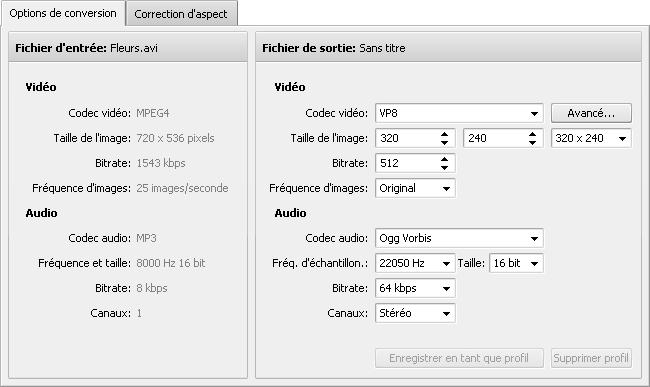 Onglet Options de conversion - WebM