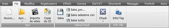 AVS Audio Editor - Scheda File