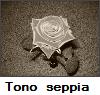 Tono seppia