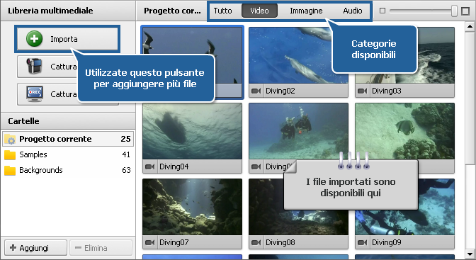 Area file ed effetti - Libreria multimediale