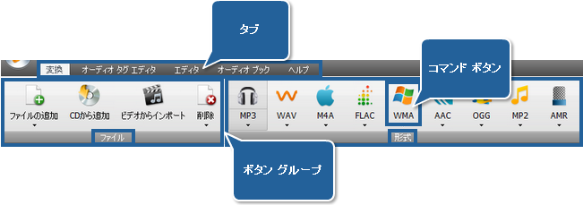 AVS Audio Converter - 変換タブ
