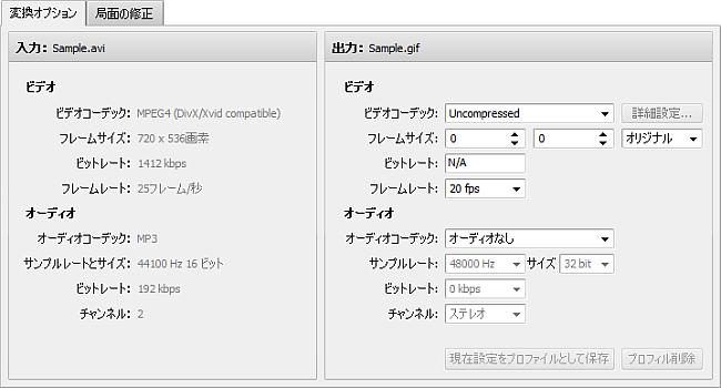 変換オプションタブ - GIF